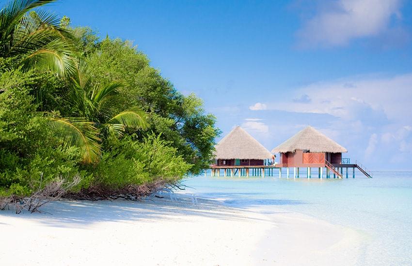 Voyage au Sri Lanka et Maldives
