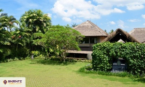 location maison bali palm river 05