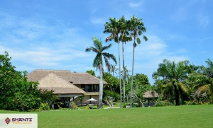 location villa bali palm river 06