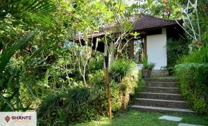 location villa bali umah shanti 09