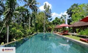 location villa suana air ubud 06