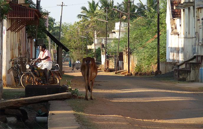 Madurai - Chettinad
