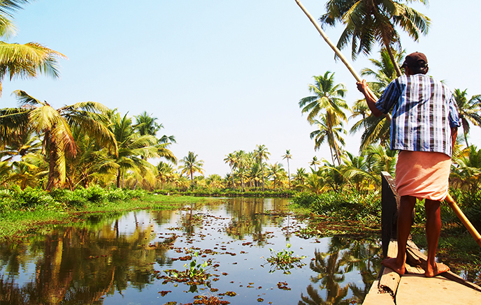 Backwaters - Vembanad See