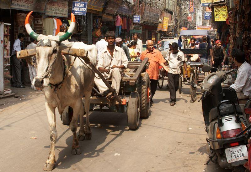 Leh - Delhi