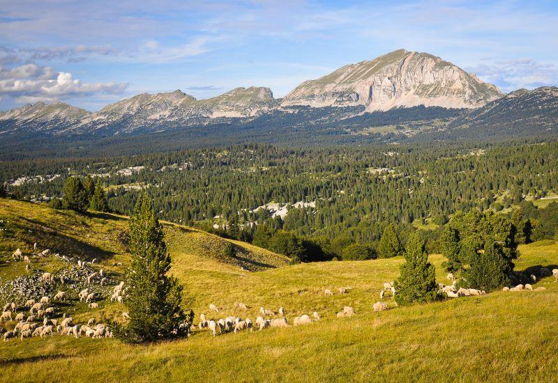 Crest - Plan-de-Baix - Leoncel (915 m)