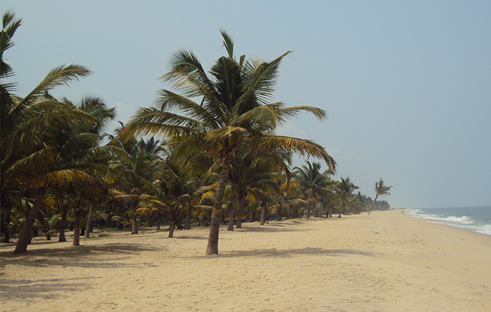 Backwaters - Malabarküste: Marari Beach