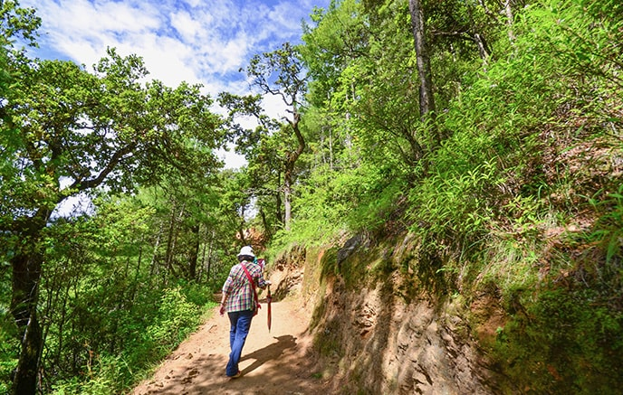 Paro – Jele Dzong