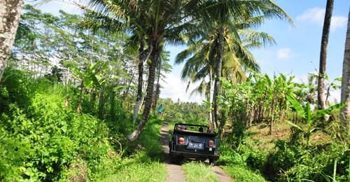 excursion en volkswagen ubud bali