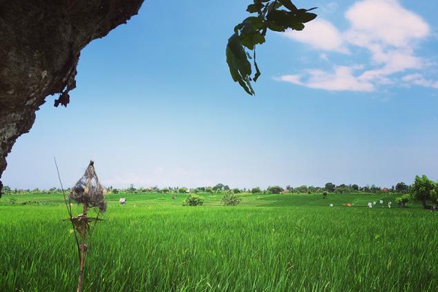 location villa Umalas / Kerobokan