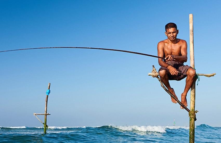 Flitterwochen in Sri Lanka