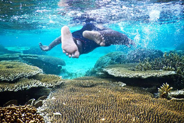 vacances bali fonds marins