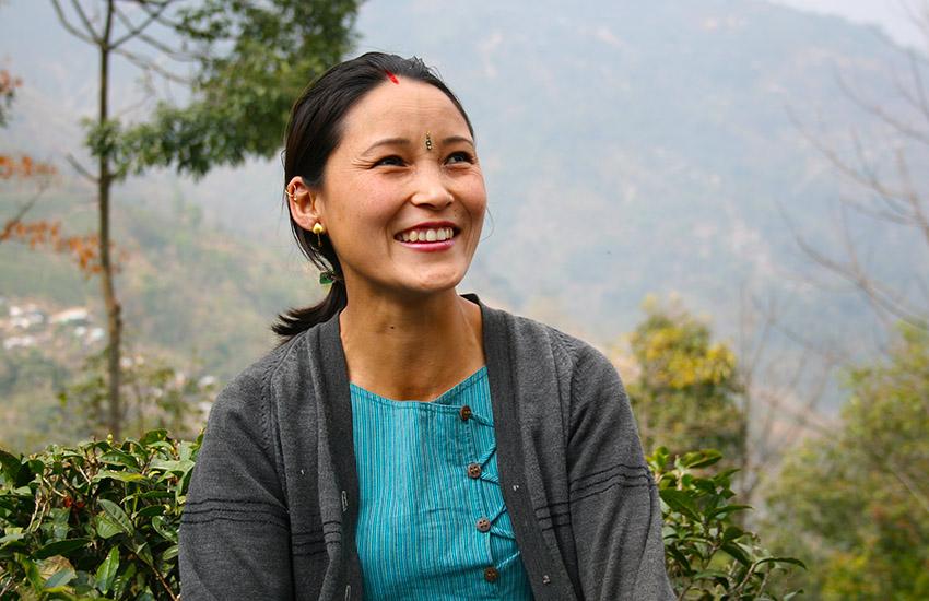 Darjeeling, les Jardins de Gaïa