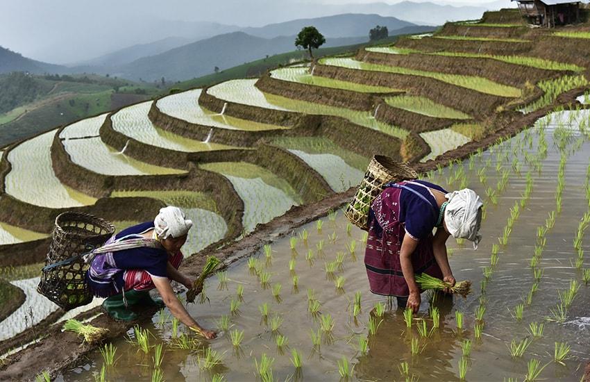 Image Grand Tour du Vietnam