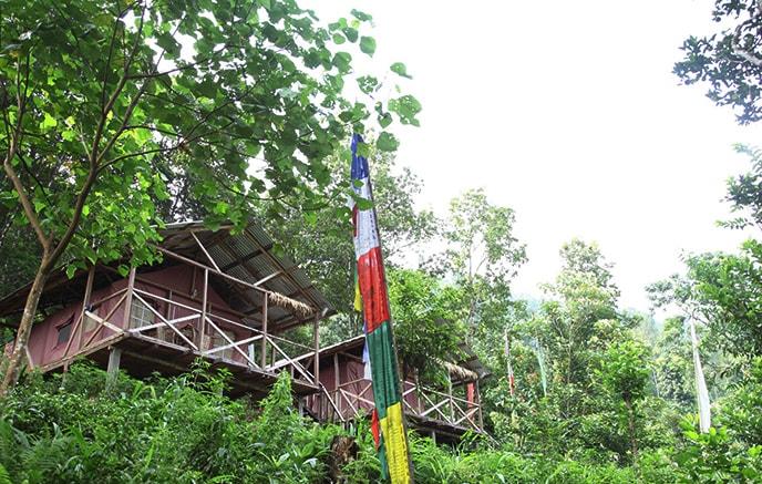 Darjeeling – Tathaga Farm