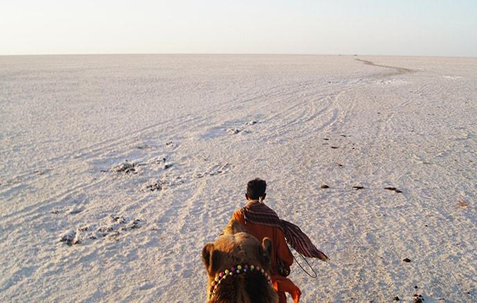 Image Escapade au Gujarat