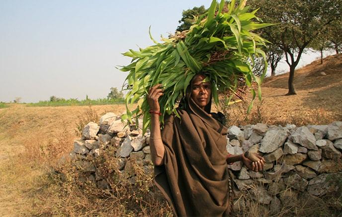 Bhuj  - Wankaner