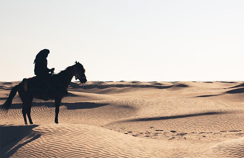 Le Shekhawati à cheval