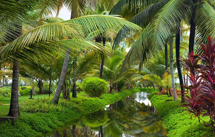 Periyar - Backwaters