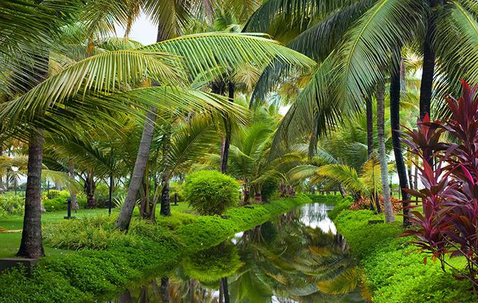Munnar – Lac Vembanad