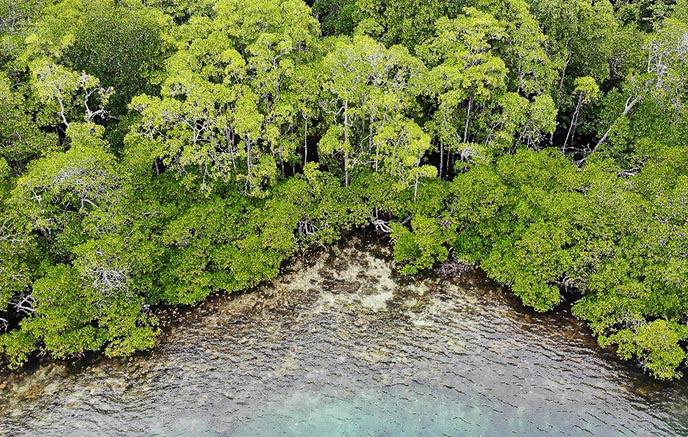 Isle of Maniafun – Yangello Island