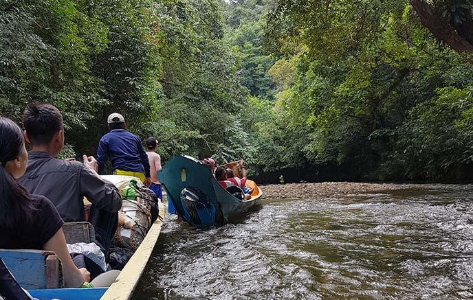 Parc National de Batang Ai – Santubong
