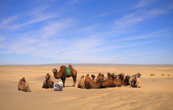 Falaises de Bayanzag - Dunes de Khongor Els