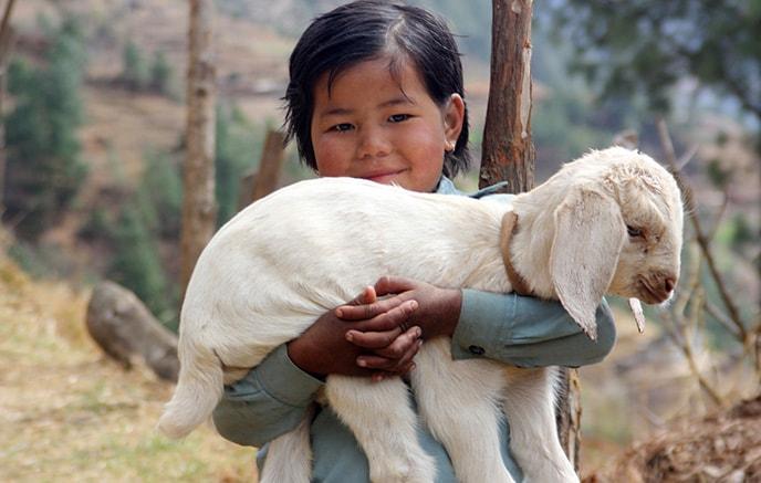 Dzongla – Gorak Shep