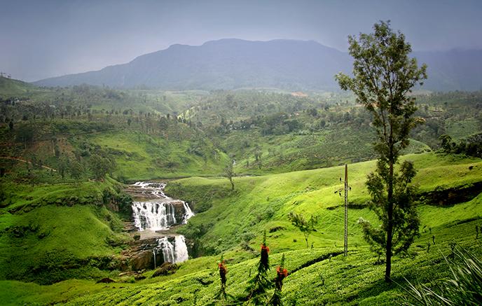 Colombo – Nuwara Eliya