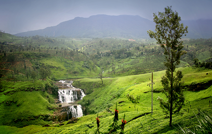 Nuwara Eliya–Kitulgala
