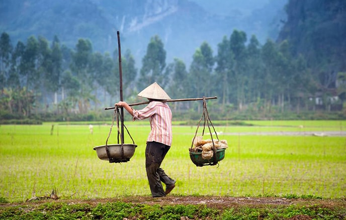 Ninh Binh – Baie d'Halong