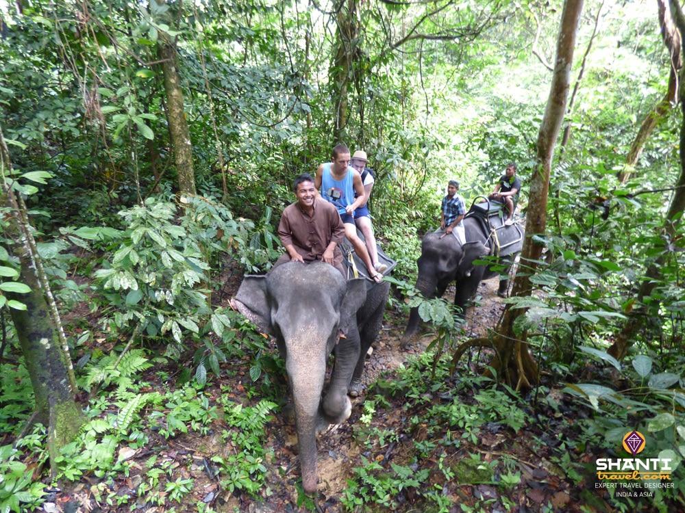 Balade à dos d'éléphant Sumatra