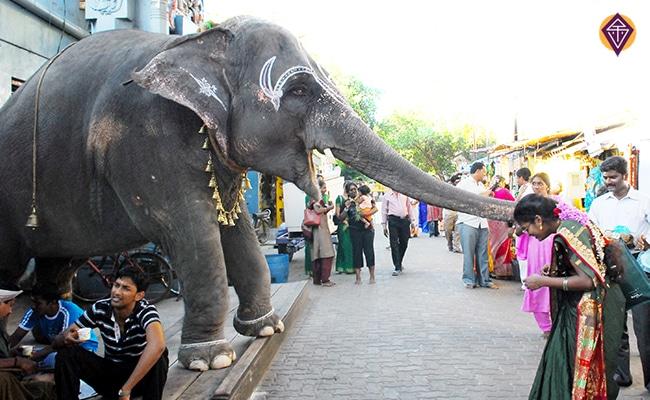 Tamil Nadu Inde