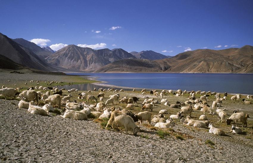 Voyage à pied : Lacs, Monastères et Nomades