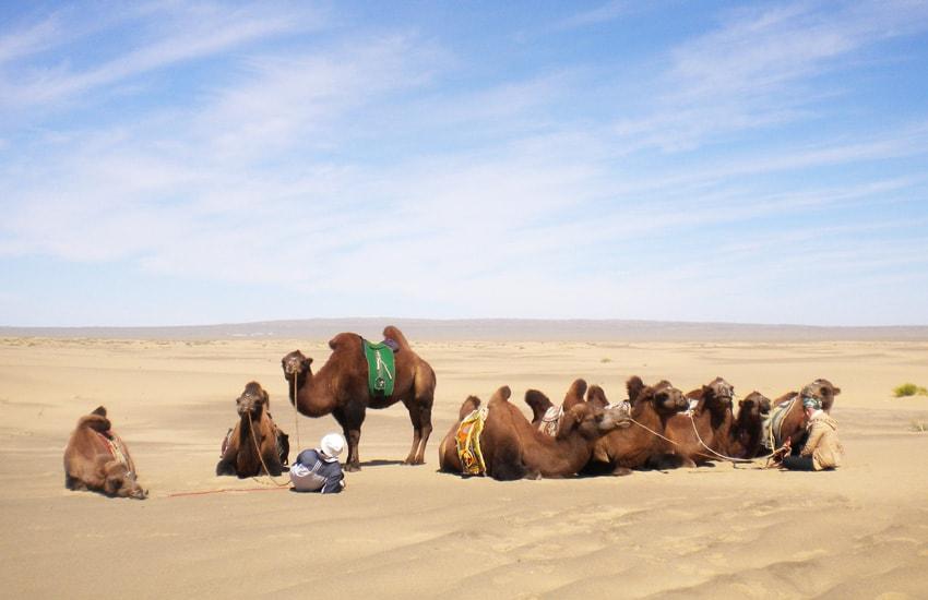Voyage à pied : La mongolie et le Désert de Gobi