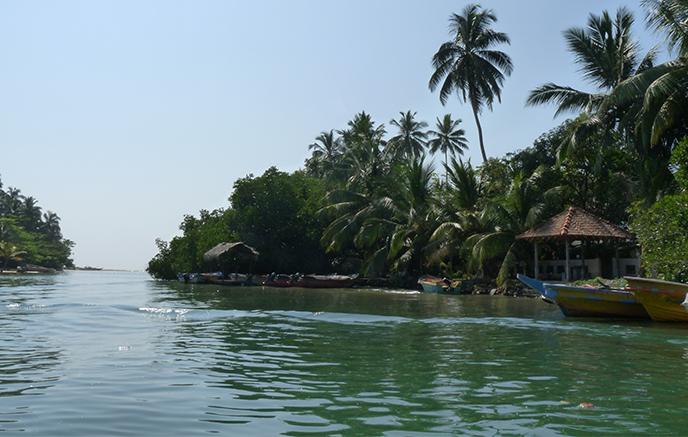 Negombo - Madulkelle