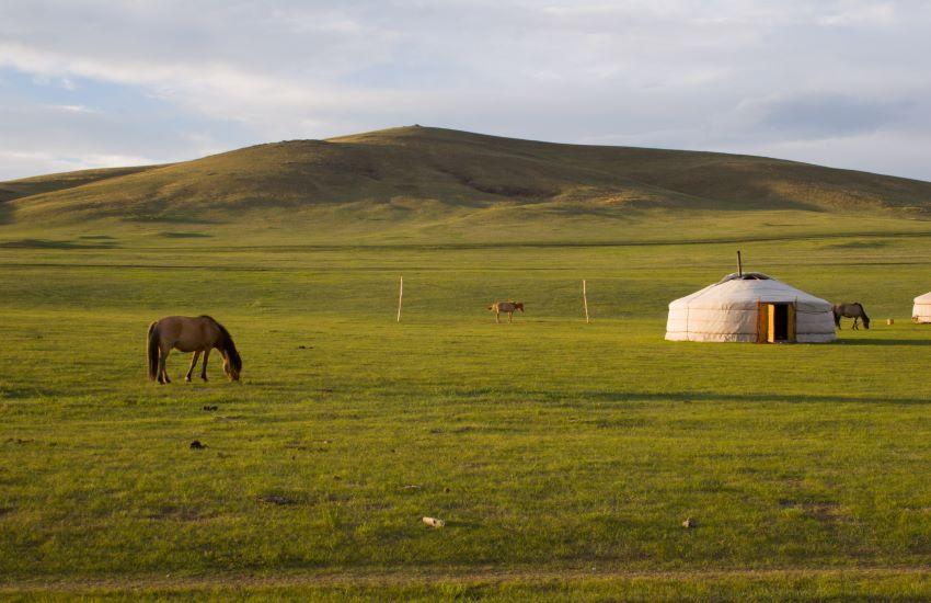 Voyage à pied : Rendez-vous en terres mongoles