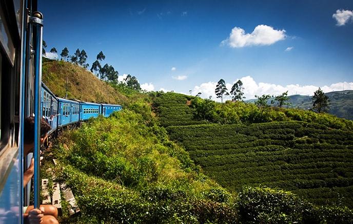 Kandy – Nuwara Eliya