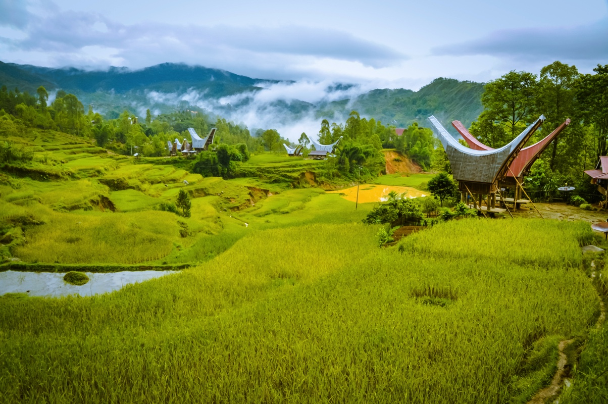 sulawesi indonesien
