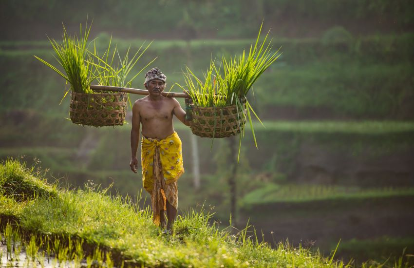 L'Indonésie en chiffres