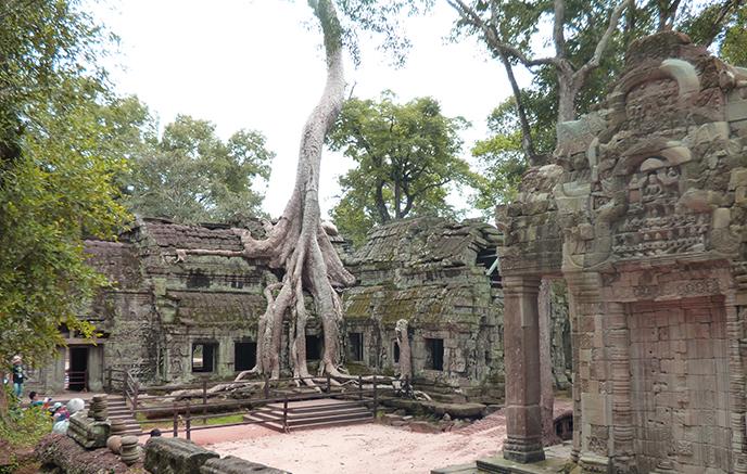 Image Culture & Paysages au Cambodge