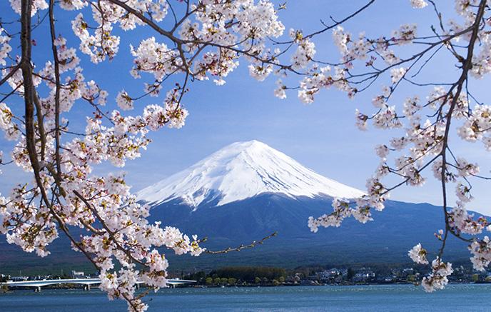 Image Rencontre avec le Japon