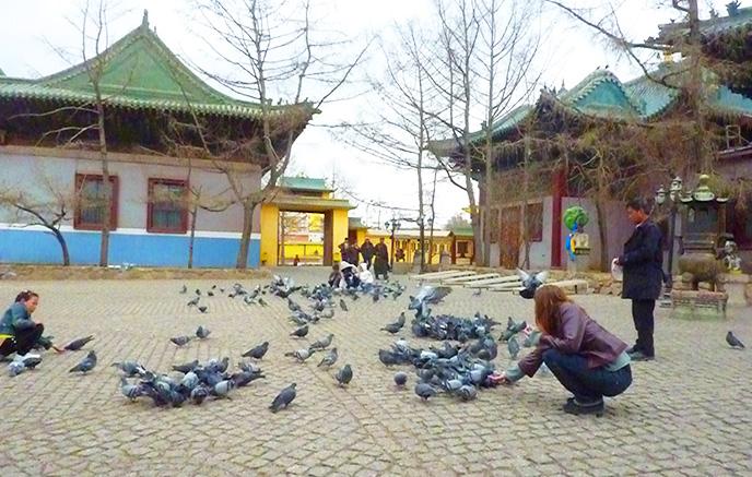 Parc de Khogno Khan - Oulan-Bator