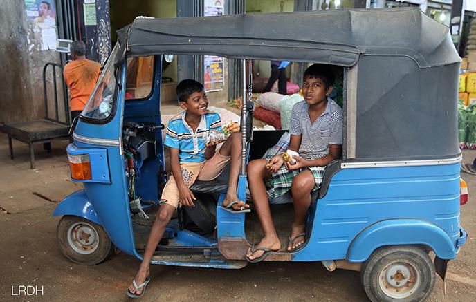 Image Les essentiels du Sri Lanka en été