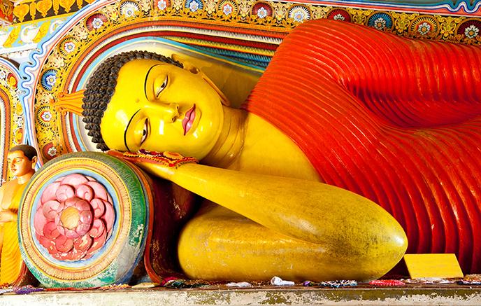 Image L'essentiel du Sri Lanka en hiver