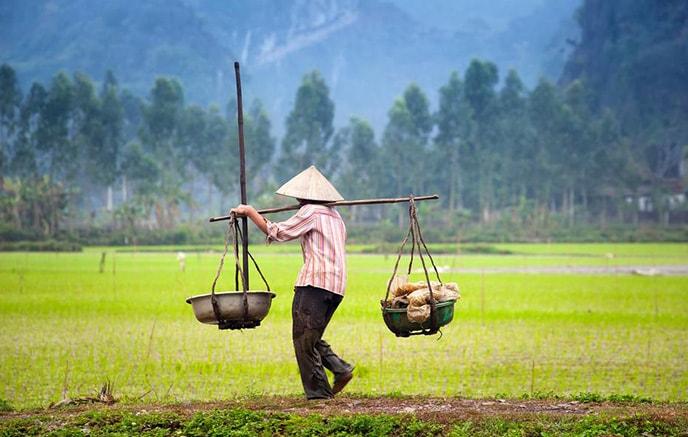 Ko Muong – Ninh Binh