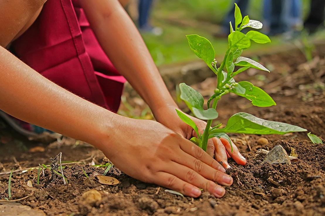 4 - Nachhaltiges Entwicklungsprojekt